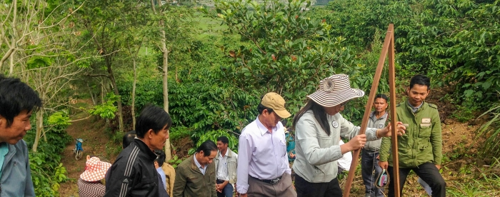 Indigenous trees for rural beautification in Viet Nam