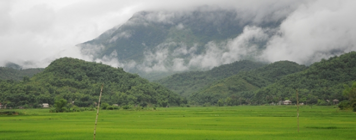 The Impacts of Forest and Forest Land Policy on Rural Livelihood in Central Viet Nam